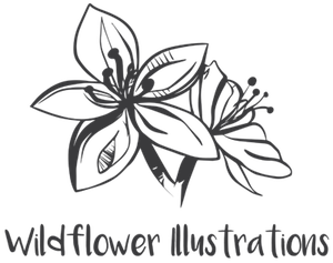 Wildflower Illustrations